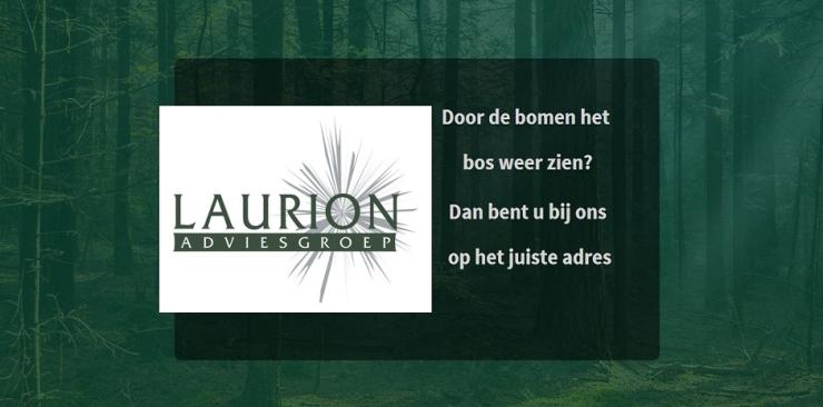 Laurion Adviesgroep