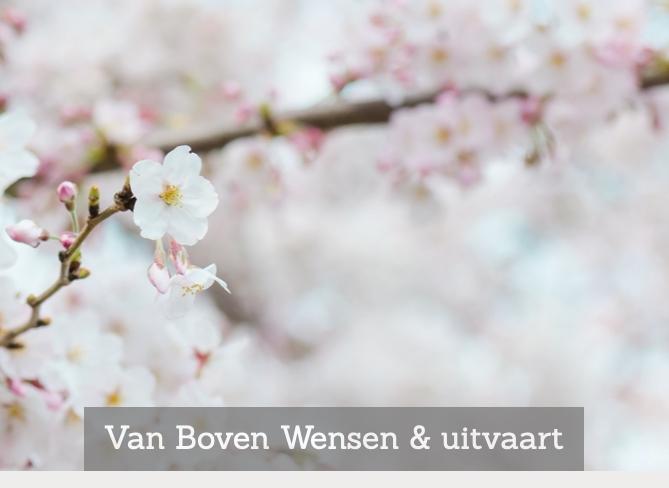 Van Boven Wensen & uitvaart